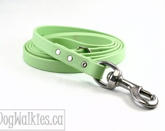 "Mint Green Biothane Dog Leash - 5/8"" (16mm) wide - Choice of: Stainless Steel or Brass Hardware and Length 4ft, 5ft or 6ft (1.2m,1.5m,1.8m)"