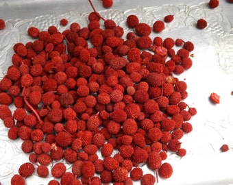 Red Berry Bowl Filler Christmas Potpourri Supply Jackie Berries 3 Cups