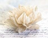 71411_Floral hair clip, Cream flower, Champagne flower, Hair accessories, Wedding, Flower barrettes, Hair clips flowers, Bridesmaid flower