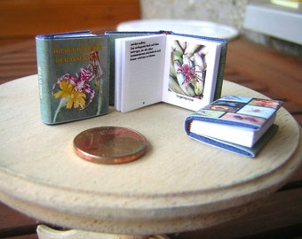Images Encyclopedia of Insects Miniature book 1/12