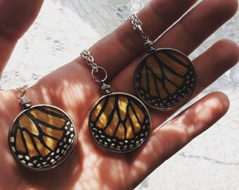 BUTTERFLY EFFECT Real Monarch Wing Window Locket Necklace