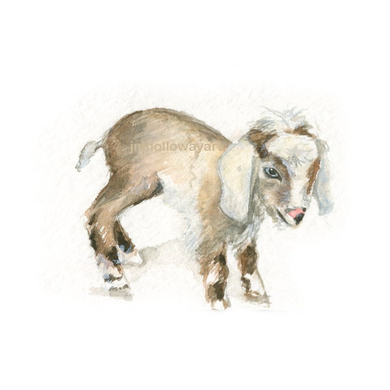 Watercolor Baby Goat Baby Goat Print Baby Goat Art Farm