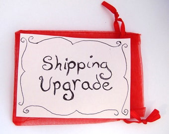 Shipping Upgrade for Any Item