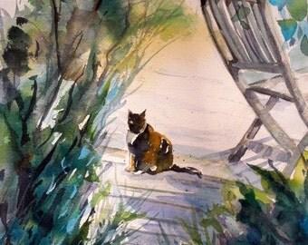 Sugar Loaf Cat under bushes