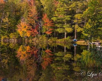 New Hampshire Pond -  Nature photography, landscape photography, fall, autumn, fine art print, leaves, new england, Pond, Lake, wall art