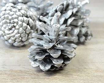 Christmas Wedding Painted Pinecones, Silver Pinecones, Natural Pine Cones, Beach Decor, Rustic Christmas  Pinecone Supply, winter wedding