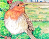 Robin - Christmas A5 / A4 size Print  - Whitstable Neptune Pub