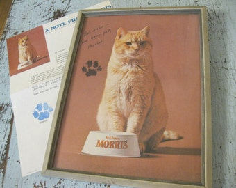 Morris The Cat , Fan Mail , 9 Lives Cat Food , Famous Cat, Cat Collectible ,Cats