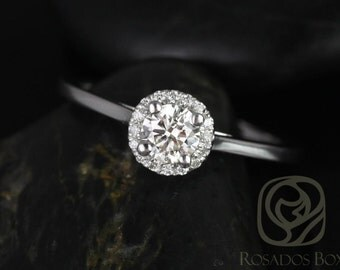 Amerie 4.5mm 1/3cts 14kt White Gold Round Diamond Halo Engagement Ring (Other metals and stone options available)