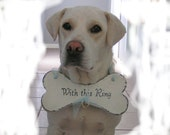 Special wedding attire for the dog in your wedding using a wedding sign