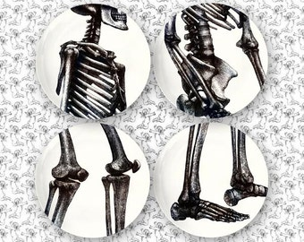 parts skeleton melamine plate