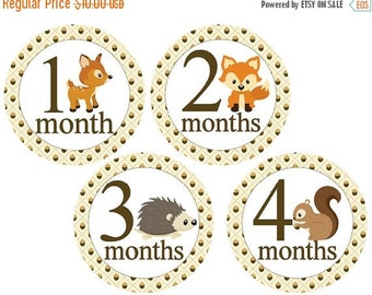 Sale Boy Monthly Stickers Milestone Stickers Monthly Baby Stickers Baby Month Stickers Baby Monthly Stickers Forest Woodland Animals