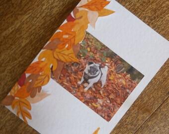 Pug card. Pug in Fall