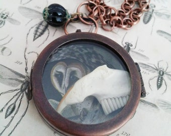 FOR MEGHAN-muskrat jaw segment with teeth, hawk feather, vintage Audubon owl print, relic necklace