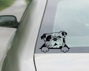 English Bulldog Decal |  Bulldog Decal | Car Decal |  Laptop Decal | Window Decal | tablet  Decal | Notebook Decal | Vinyl