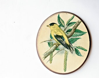 Vintage 1950s Wood Bird Plaque - Goldfinch Bird Made by Woodcroftery, Crazing Marks Aged Patina, Natural Home Decor Bird Art, Spring Home