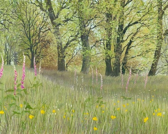 Panoramic- My Favourite Foxglove Woods - Limited Edition Print