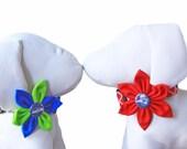 NFL Flower for Dog Collar