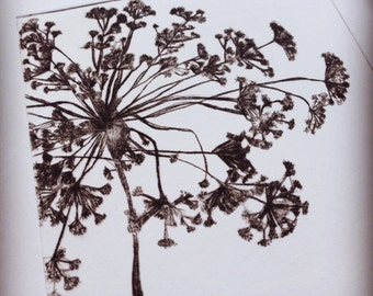 Fragile - a limited edition drypoint etching