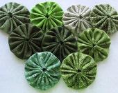 yo yos 30 1 1/2  inch assorted  shades of Green