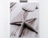 Starfish Print Sea Shell Photo Black White Sepia Nautical Decor Coastal Wall Art Beach Cottage Home Shabby Chic Nature Photography Summer