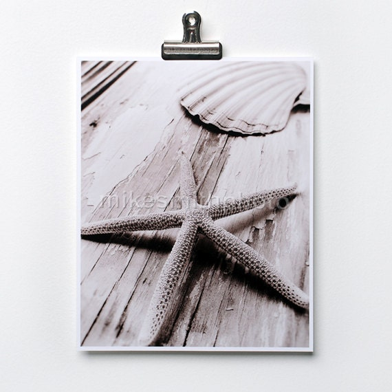 Starfish Print Sea Shell Photo Black White Sepia Nautical Decor Coastal Wall Art Beach Cottage Home Shabby Chic Nature Photography Summer