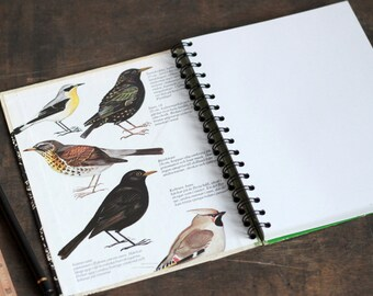 "Recycled Notebook Tartuensis College ""Birds"", Spiral Bound Journal"