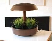 Mid Century Terrarium Indoor Garden Planter with light