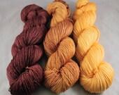 Driftwood - SW merino sock yarn set