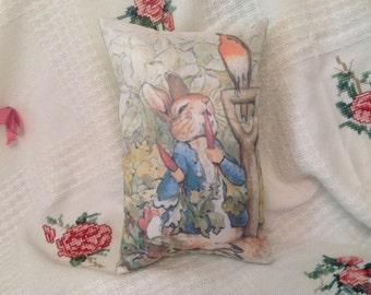 "Beatrix Potter ..12"" x 7.5"" Peter Rabbit and the Carrots Pillow."