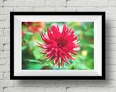 Enchanting Red Fine Art Print, Nature Photography,  Wall Art, Flower, Wall Art Print, Red Flower, Wall Deco, Home Deco, Floral