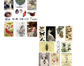 Birds and Bees Digital Collage Set