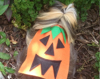 halloween cape for your guinea pig