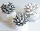Geometric Nickel Set of 3 Succulent Sculptures, Tabletop, Desktop, Modern, Home and Office Decor