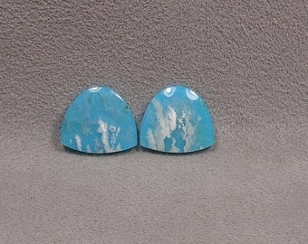 REGENCY PLUME AGATE Backed With Reconstituted Turquoise Doublet Cabochons Matched Pair Set of 2