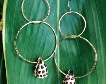 Hebrew shell hoops