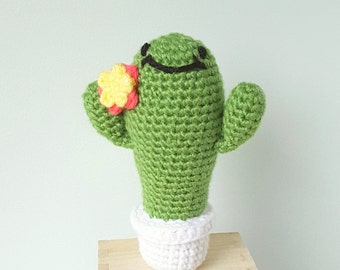 Amigurumi Happy Cactus- Crochet Plush Cactus, Amigurumi cactus, Children's Gift, Stuffed Toy, desk buddy