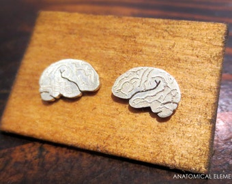 Brain Earrings - Sterling Silver