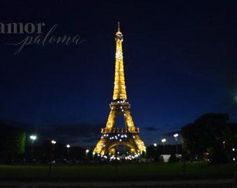 Eiffel Tower Illuminated 8x10 Print