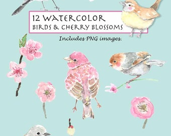 CLIP ART- Watercolor Birds & Cherry Blossoms Set. 12 Images. Digital Download. Flower. Garden. Nature.