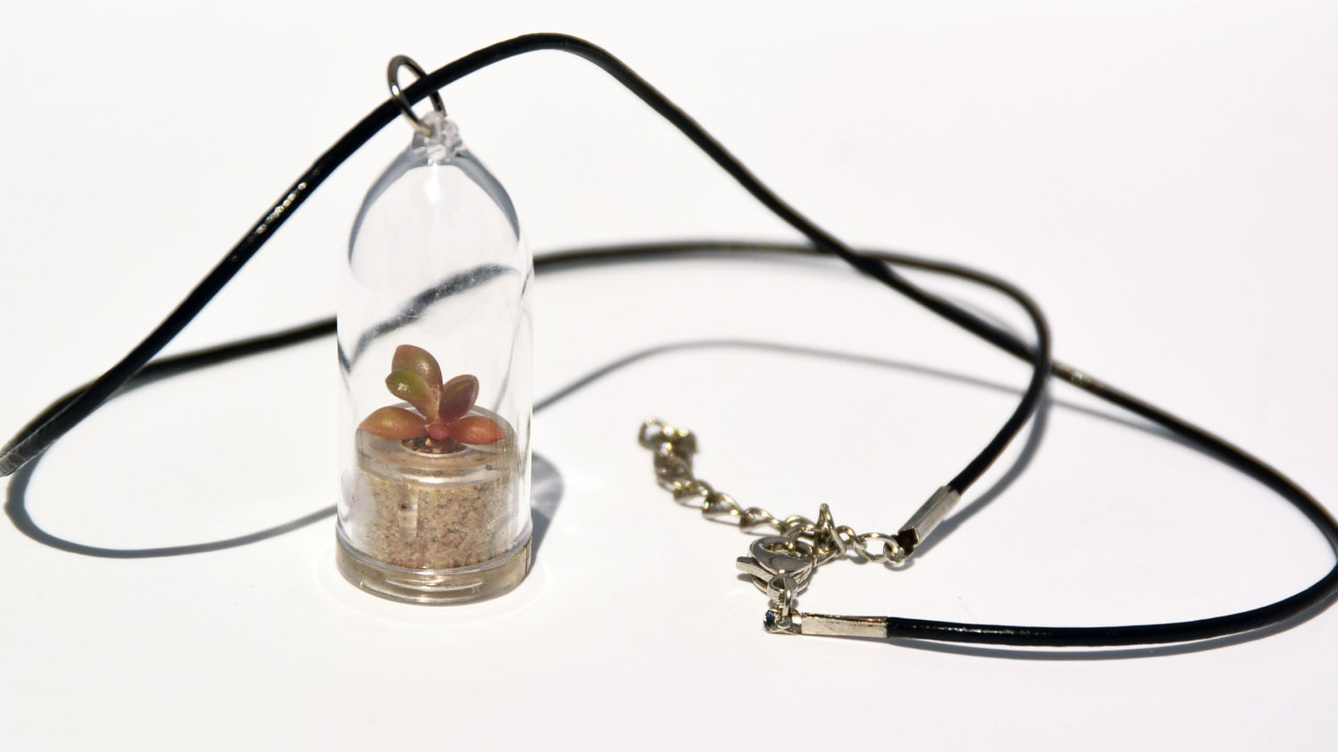 Pinky rose plant terrarium necklace live succulent for Gemsprouts tiny plant jewelry