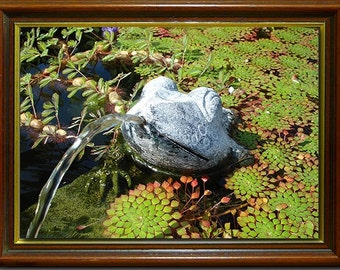 Fine Art print of funky frog fountain photograph