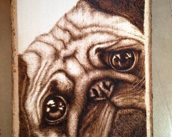 Pug dog woodburning