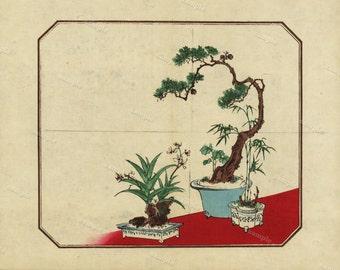 Japanese Plants Original Antique Woodblock print From 1890 wall art- art decor-home decor decorative art