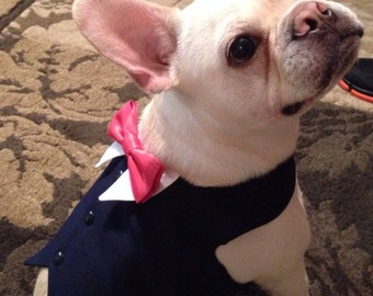 Navy Blue Dog Wedding Tuxedo