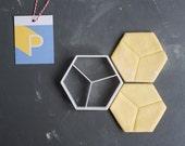 Pentagon tilings 3 cookie...