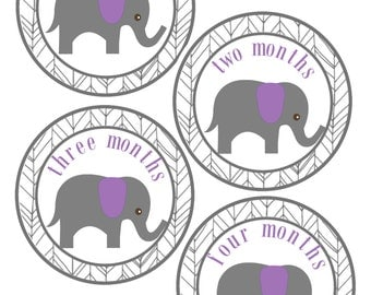 Babys First Year Stickers, Elephant Baby Stickers, Set of 12 Month to Month Stickers