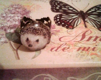 hedgehog ring kawaii cabochon animal