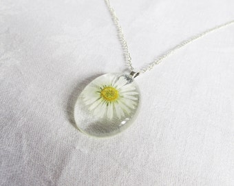 Pressed Flower Necklace  Oval Real Daisy