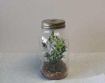 Silk Quart Sized Mason Jar Terrarium